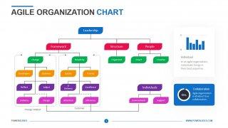 Agile Organization Chart