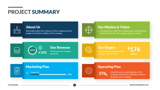 Project Executive Summary
