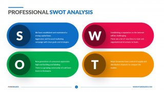 Professional SWOT Analysis