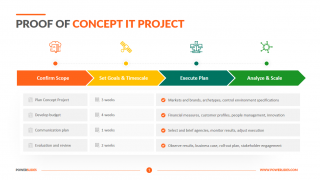 Proof of Concept IT Project