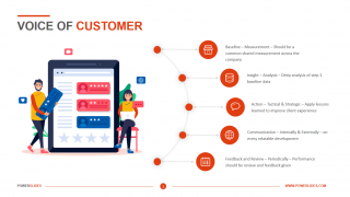 Voice of Customer Template