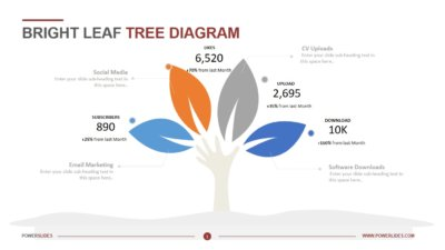 Bright Leaf Tree Diagram